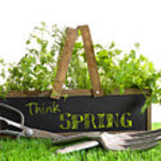 Garden Box With Assortment Of Herbs And Tools Poster by Sandra Cunningham