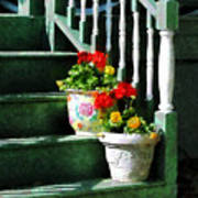 Geraniums And Pansies On Steps Poster by Susan Savad