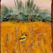 Goldfinch In The Wheat Poster by Carolyn Doe