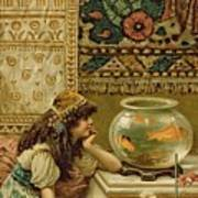 Goldfish Poster by William Stephen Coleman