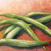 Green Beans Poster by Sandra Neumann Wilderman