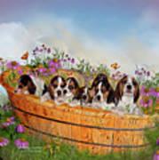 Growing Puppies Poster by Carol Cavalaris