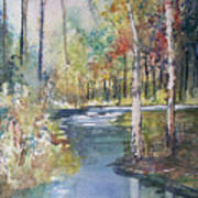 Hartman Creek Birches Poster by Ryan Radke