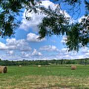 Hay Field In Summertime Poster by Douglas Barnett