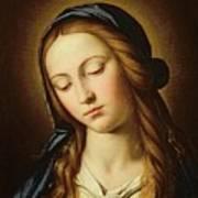 Head Of The Madonna Poster by Il Sassoferrato