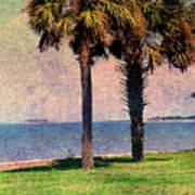 Historic Fort Sumter Charleston Sc Poster by Susanne Van Hulst