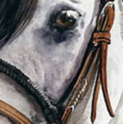Horse Head Poster by Nadi Spencer