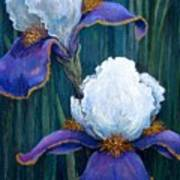 Irises Poster by Tanja Ware