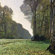 Le Pave De Chailly Poster by Claude Monet