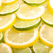Lemons And Limes Poster by James BO  Insogna