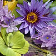 Lilies No. 38 Poster by Anne Klar