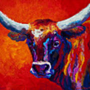 Longhorn Steer Poster by Marion Rose