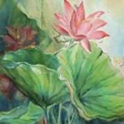 Lotus Of Hamakua Poster by Wendy Wiese