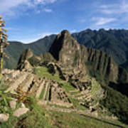 Machu Picchu And Bromeliad Poster by James Brunker