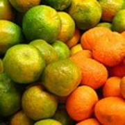 Mandarins And Tangerines Poster by Yali Shi