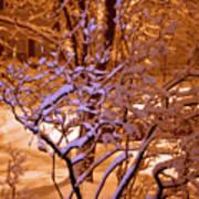 Midnight Snow Poster by Ellen Andrews