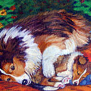 Mom's Love - Shetland Sheepdog Poster by Lyn Cook