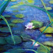 Monets Garden Poster by Susan Jenkins
