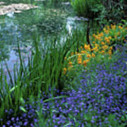 Monet's Lily Pond Poster by Kathy Yates