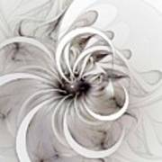 Monochrome Flower Poster by Amanda Moore