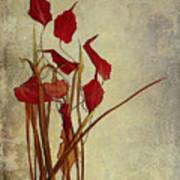 Nature Morte Du Moment Poster by Aimelle