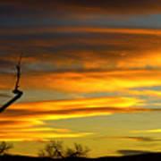 November Sunset Poster by James BO  Insogna