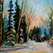Ormstown Quebec Winter Road Poster by Carole Spandau