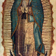 Our Lady Of Guadalupe Poster by Pam Neilands