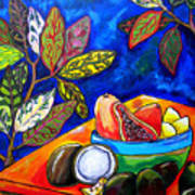 Papaya Morning Poster by Patti Schermerhorn