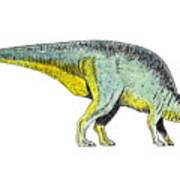 Parasaurolophus Poster by Michael Vigliotti