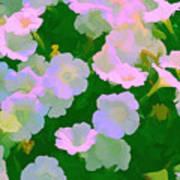Pastel Flowers Poster by Tom Prendergast
