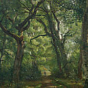Path In The Forest Poster by Henri Joseph Constant Dutilleux