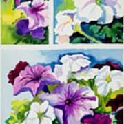Petunias In Summer Poster by Janis Grau
