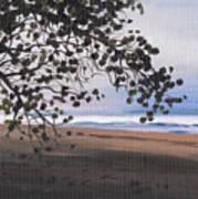 Pools Beach Poster by Sarah Lynch