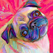 Pugsly Poster by Karen Derrico