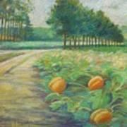 Pumpkin Patch Poster by Leslie Alfred McGrath