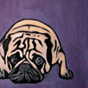Purple Pug Poster by Darren Stein