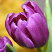 Purple Spring Poster by Linda Sannuti