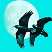 Ravens Of The Moon . Cyan Square Poster by Wingsdomain Art and Photography