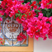 Red Bougainvilleas Poster by Gaspar Avila