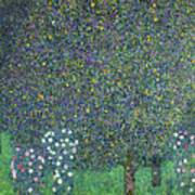 Roses Under The Trees Poster by Gustav Klimt