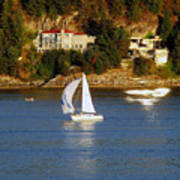 Sailboat In Vancouver Poster by Robert Meanor