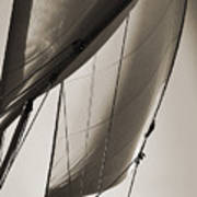 Sailing Beneteau 49 Sloop Poster by Dustin K Ryan