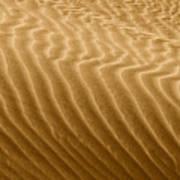 Sand Dune Mojave Desert California Poster by Christine Till