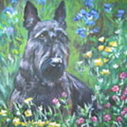 Scottish Terrier In The Garden Poster by Lee Ann Shepard