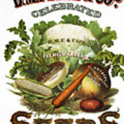 Seed Company Poster, C1800 Poster by Granger