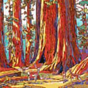 Sequoia Deer Poster by Nadi Spencer