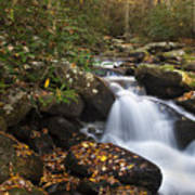 Smokies Stream In Autumn Poster by Andrew Soundarajan