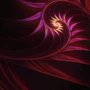 Spira Mirabilis Poster by John Edwards