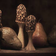 Still Life With Mushrooms And Pears II Poster by Tom Mc Nemar